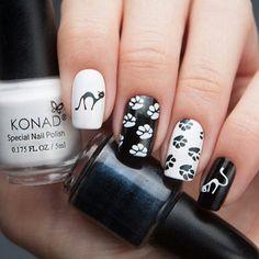 Cat nails konad stamping plates