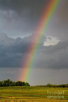✯ Over The Rainbow