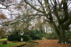 Carly Mann's tree at Mottisfont Abbey, click the pic for more info!