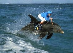 Google Image Result for http://www.europeword.com/blog/wp-content/uploads/European-extreme-sports.jpg