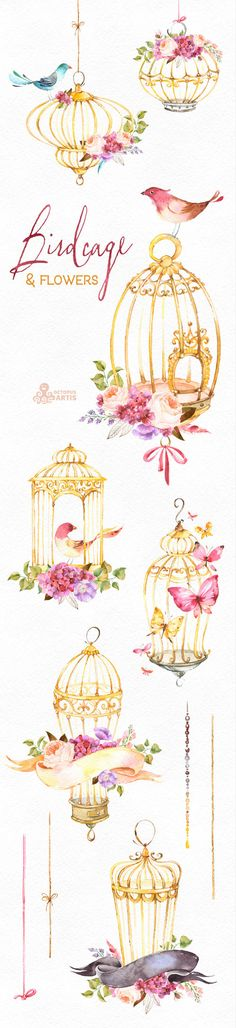 Birdcage & Flowers. Watercolor Floral clipart от OctopusArtis