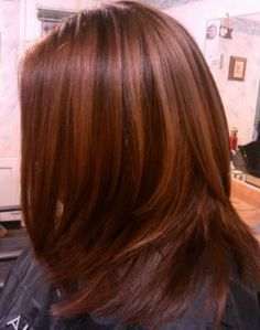 Low Lights, Color, Cut. Hair by: