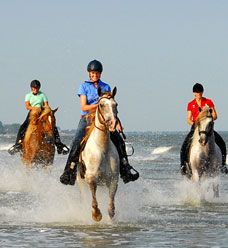 """Picture from: Sea Island, Georgia    Whether domestic or international- riding on the beach is commonly on the """"bucket list"""" of a horseback rider. Triple Crown Nutrition"""