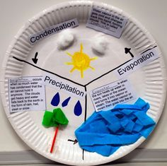 Water cycle lesson plan, grade most water cycle paper plates activities, th Water Cycle Craft, Water Cycle Project, Water Cycle Activities, Teaching Activities, Teaching Science, Science For Kids, Earth Science, Geography Activities, Weather Activities