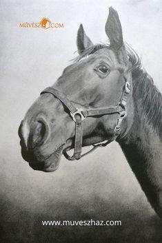 Cuki állatok! >> Gyönyörű ló rajz végzősünktől! Katt és nézz meg még több cuki állatos rajzot! >> Horses, Animals, Animales, Animaux, Animal, Animais, Horse