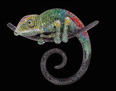 Chameleon by Palmiero