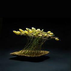 Touchingly honest. Pim van den Akker www.pimvandenakker.com www.flowerfactor.com #floraldesign
