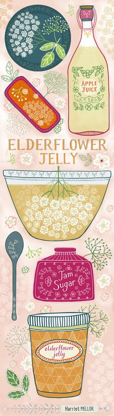 Harriet Mellor Art and Design, a tall version of my elderflower jelly illustrated recipe Food Illustrations, Illustration Art, Wine Label Design, Tea Packaging, Incredible Edibles, Illustrated Recipe, Elderflower, Stamp, Packaging Design Inspiration