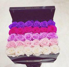 These maison des fleurs