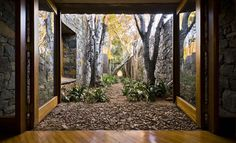 Amazing wooded courtyard, with window walls that open right onto it. Outdoor Living, Farm Villa, Architecture Definition, Internal Courtyard, Highland Homes, Inside Outside, Window Wall, Contemporary Architecture, Arquitetura