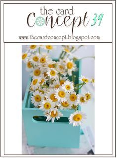 I Card Everyone : The Card Concept 39 Daisies