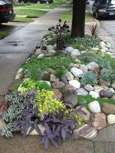 38 Amazingly Green Front-yard & Backyard Landscaping Ideas Get Basic Engineering, Home Design & Home Decor. Amazingly Green Front-yard & Backyard Landscaping Ideasf you're anything like us, y Sidewalk Landscaping, Low Water Landscaping, River Rock Landscaping, Mailbox Landscaping, Small Front Yard Landscaping, Succulent Landscaping, Landscaping With Rocks, Succulents Garden, Backyard Landscaping