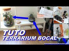 Aquarium Terrarium, Diy, Home Appliances, Green, Mason Jar Terrarium, House Appliances, Bricolage, Do It Yourself, Appliances