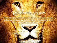 ❥ THE LION OF JUDAH SHALL BREAK EVERY CHAIN