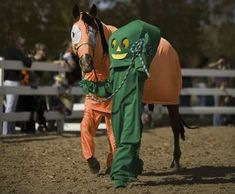 The 20 Most Miserable Horses In The World halloween costumes with horse equestrian equine #ranchlife cowboy cowgirl drysdales.com