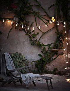 こんなステキなお庭なら、少し寒くてもあったかいココアなんかを飲みながら外で過ごすのもおしゃれです。                                                                                                                                                                                 もっと見る