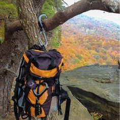 The Qlipter makes the perfect hiking and backpacking companion. Holds up to 50lbs and keeps your gear off the ground. Works like a carabiner but hangs like a hook. #HikingGear http://qlipter.com/pages/outdoors