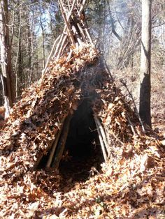 A Wickiup Shelter   14 Survival Shelters You Can Build For Any Situation
