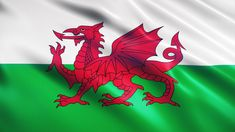 Welsh Pinot Noir blows rivals out of the water - The Drinks Business Dragon King, Red Dragon, Welsh Dragon, Y Ddraig Goch, Wales Flag, Saint David's Day, England, Thing 1, Places