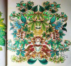Johanna Basford Secret Garden, Secret Garden Coloring Book, Johanna Basford Coloring Book, Coloring Books, To Go, Simple, Creative, Inspiration, Instagram