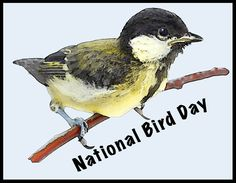 January 5: National Bird Day, National Bean Day