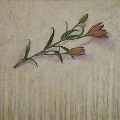 art, painting, flower, lily www.rachelpaxton.com