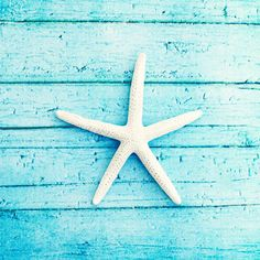 "Beach Photography - starfish aqua blue - white photo print - seashore coastal living - cottage decor - 8x8 Photograph, ""On the Boardwalk"". $30.00, via Etsy."