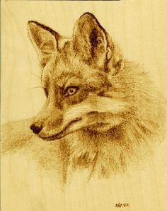 """Red fox"" Wood burning on birch by Melissa Napier"