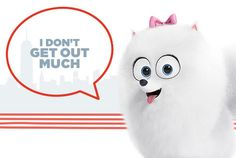 The Secret Life of Pets | In Theaters July 8