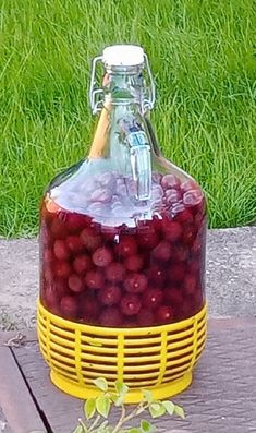 Gourmet Gifts, Prunus, Food Hacks, Raspberry, Recipies, Cocktails, Food And Drink, Vodka, Canning