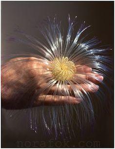 Amazing Nylon Art Rings by Nora Fok - The Beading Gem's Journal