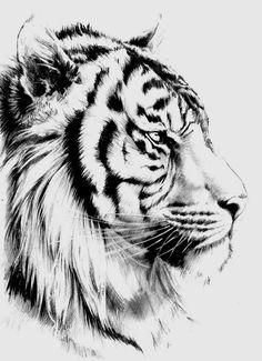Tiger Tattoo Small, Tiger Tattoo Sleeve, Tiger Tattoo Design, Tattoo Design Drawings, Cat Tattoo, Sleeve Tattoos, Tiger Design, Tattoo Ink, Tiger Illustration