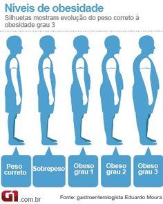 Arte Obesidade Bem Estar (Foto: Arte/G1)