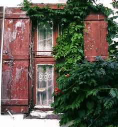 Window (like 'em) by atatarum, via Flickr