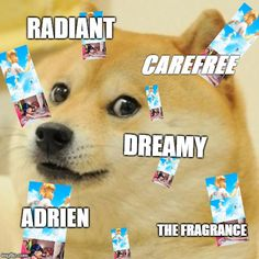 Radiant Carefree Dreamy Adrien The Fragrance ADRIENEEN