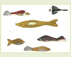 Antique Fish Decoys Watercolors