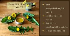 Pampelišková mast Beauty Tips, Beauty Hacks, Special Recipes, Homemade Beauty, Allergies, Diet Recipes, Fruit, Fitness, Kitchen