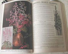1932 Dreer's Vintage Garden Book-beautiful flowers-roses-vegetables and so much more...
