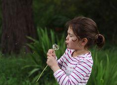 child photography, dandelion, ©Misty Exnicios