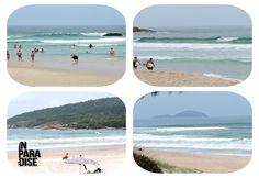 2ª Edição Boletim das Ondas In Paradise no ar! Clique na praia abaixo: Joaquina – Praia Mole – Barra da Lagoa –