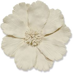 Georgia Global Ivory Ceramic Floral Wall Sculpture (205 NZD) ❤ liked on Polyvore featuring home, home decor, ceramic home decor and floral home decor