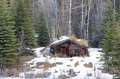Off-gridder cabin in the woods - remote Alaska | by Alan Vernon.