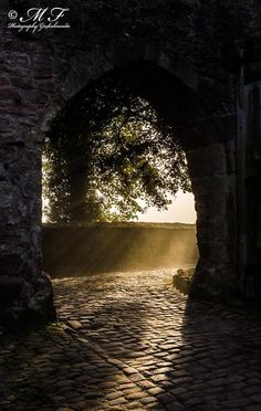 Das Tor zum Burginnenhof ist geöffnet, die ersten Sonnenstrahlen leuchten dem Gast auf Schloss Berlepsch.