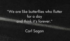 """Reflexiones instantáneas por Max: ... tan solo un día...!!! """"somos como las mariposas que revolotean por un día y piensan que es para siempre"""""""