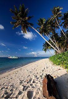 Derawan Island - Kalimantan