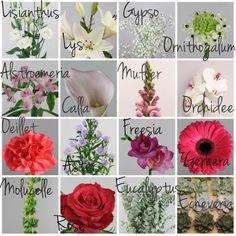 COMMENT FAIRE SA DECO FLORALE ? Décoration florale de mariage DIY | Mademoiselle Dentelle