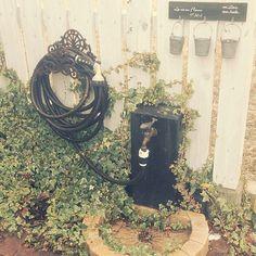 女性で、の雑貨/庭/アイビー/ウッドフェンス/立水栓/壁/天井…などについてのインテリア実例を紹介。「立水栓。なんの変哲もないものですが、花壇で伸びすぎたアイビーが勝手にからんで雰囲気良くなりました( ๑˃̶ ॣꇴ ॣ˂̶)♪⁺·✧そして花壇からはアイビー以外の花が姿を消しました…(。º̩̩́⌓º̩̩̀).゜そして最近外の写真ばかりなのは家の中が片づかないからです…w」(この写真は 2014-01-25 15:32:21 に共有されました)