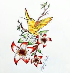 Hummingbird - Colibri