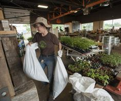 Opportunity sprouts from Detroit's urban farms