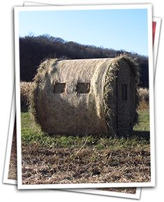 54 Best Hunting Blinds I Like Images In 2016 Hunting